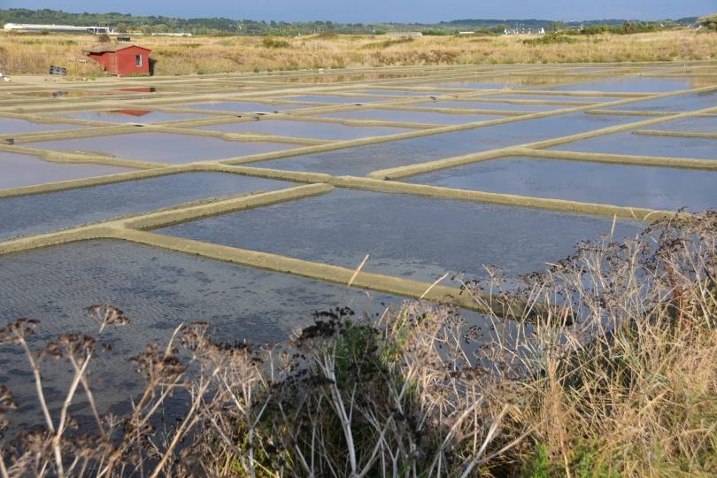 Ebene - und Salzgewinnung in den Weiten der Salinen