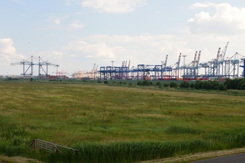 Erster Anblick bei der Annäherung an Bremerhaven ist der gigantische Containerterminal