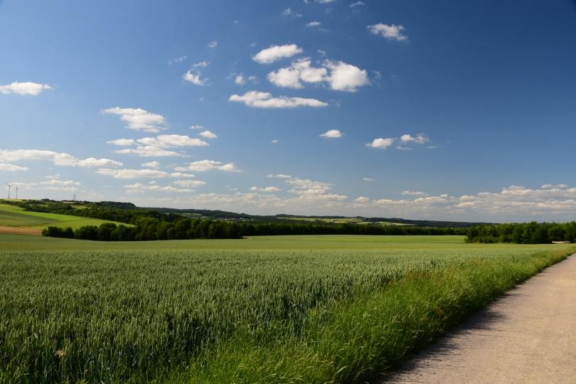 Blick über das Saarland - ich glaube, das ist schon das ganze Saarland