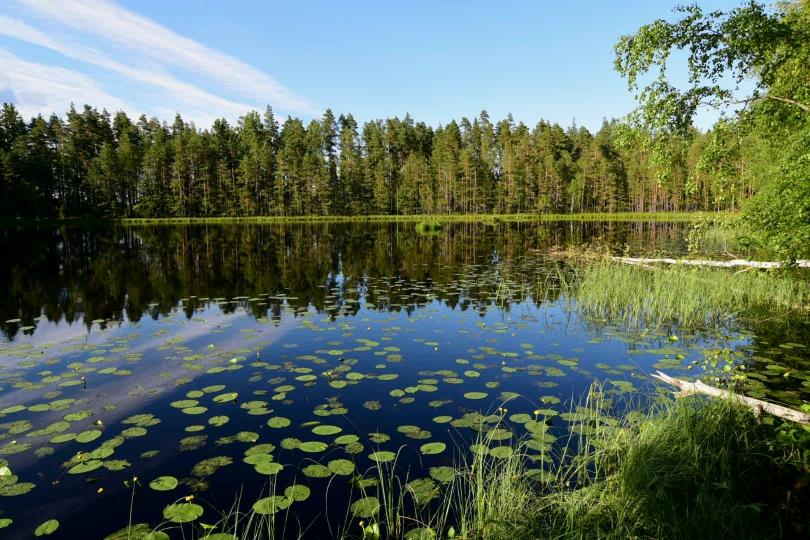 Kein Zweifel, ich bin in Finnland angekommen und nutze gleich für die erste Nacht das finnische Jedermannsrecht und zelte mit dieser Aussicht in der Natur