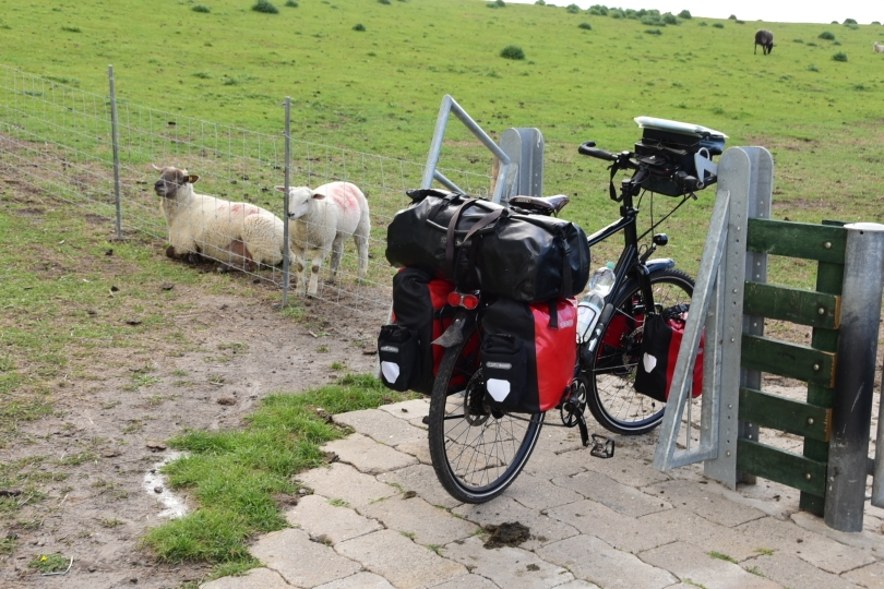 Und das ist in Niedersachsen mit in den Boden eingelassenen Gittern statt Toren eindeutig besser geregelt!