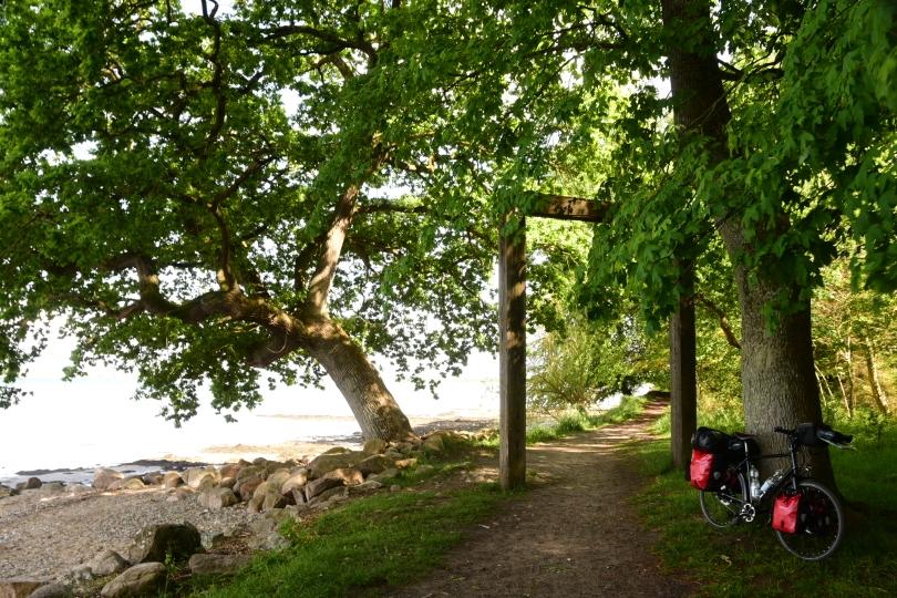 Der Ostseeradwanderweg bietet immer wieder tolle Ausblicke