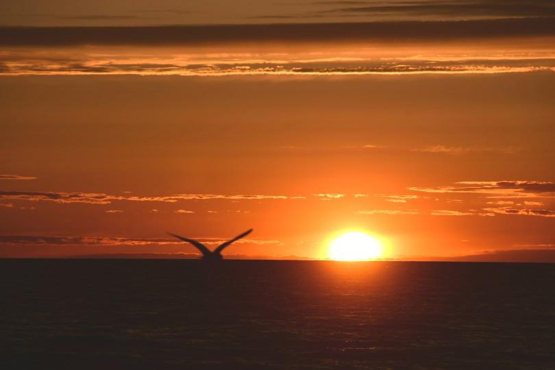 Und ganz ohne Sunset über der Ostsee geht auch dieser Bericht nicht