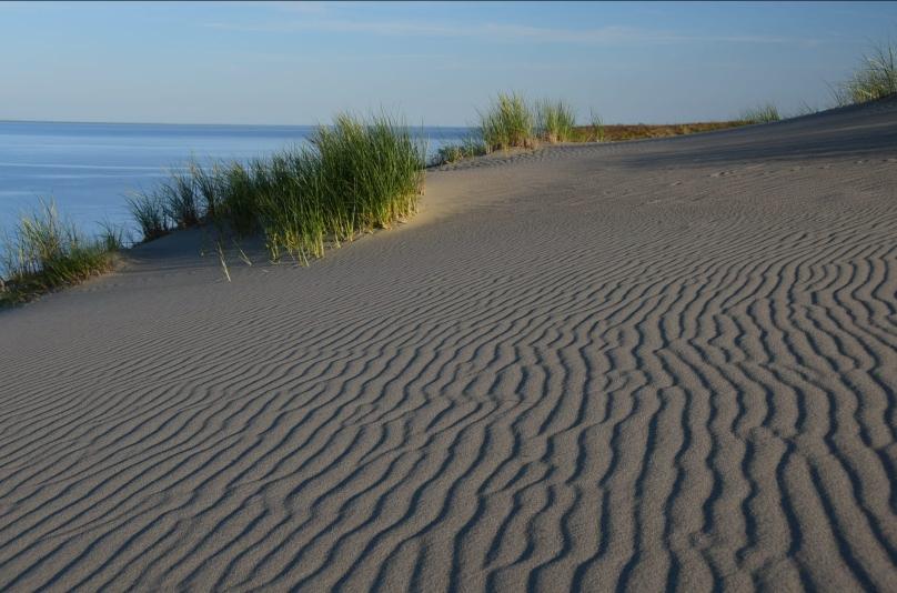 Und die Sanddünen haben in der Abendsonne auch ihren Reiz
