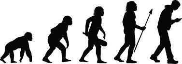 腰痛の進化