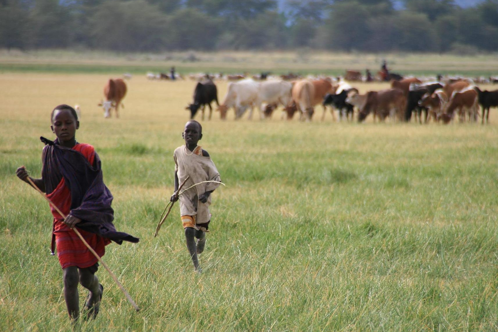 Kulturen in Tansania