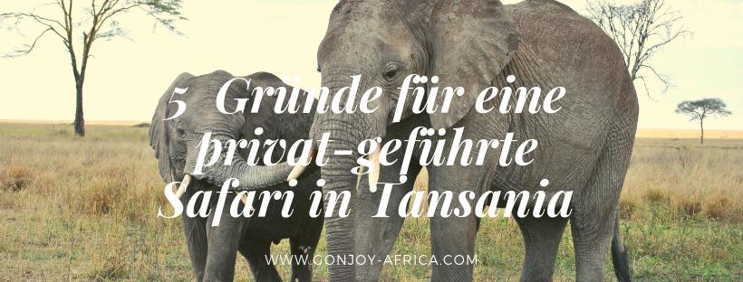 Privat geführte Safari in Tansania