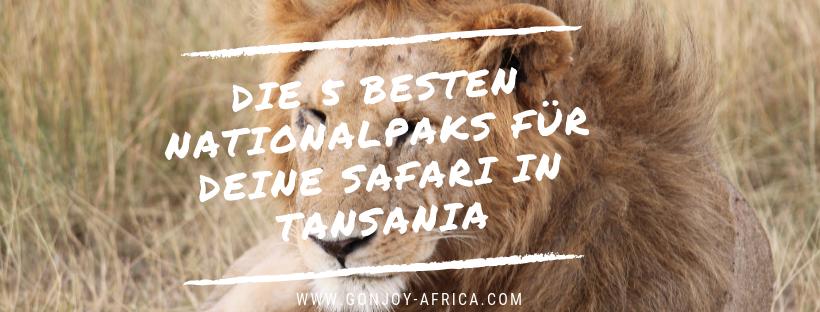 Nationalparks Tansania Safari