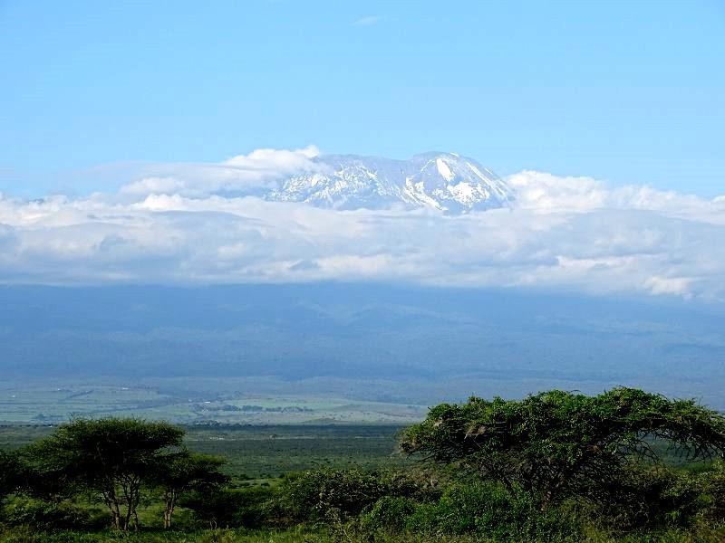 Kilimanjaro auf unserer Kenia Safari