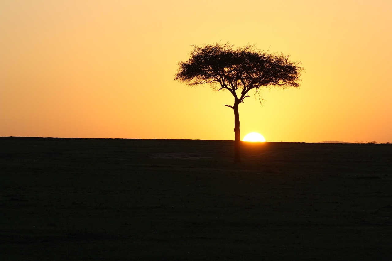 Masai Mara Sonnenuntergang
