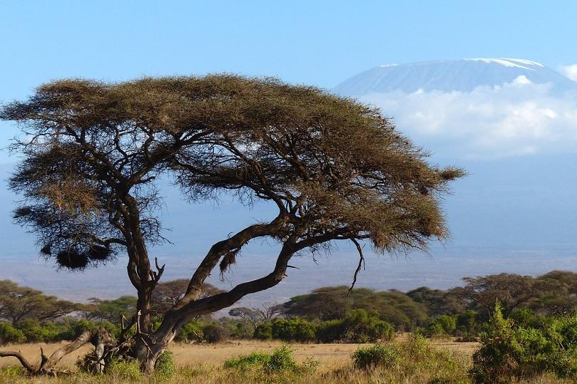 Kilimanjaro in Tansani
