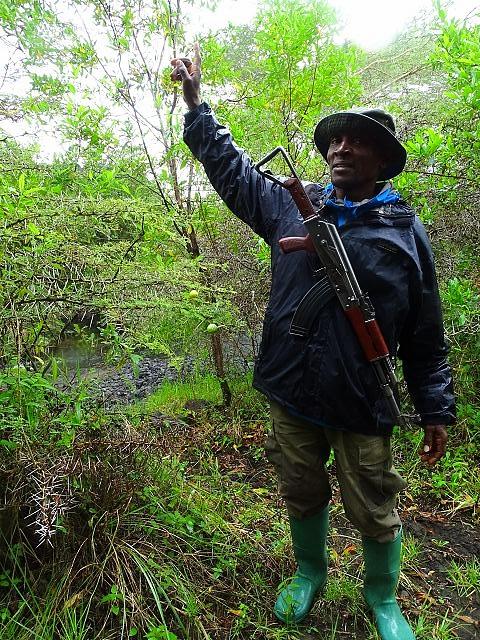 Buschwanderung im Arusha Nationalpark