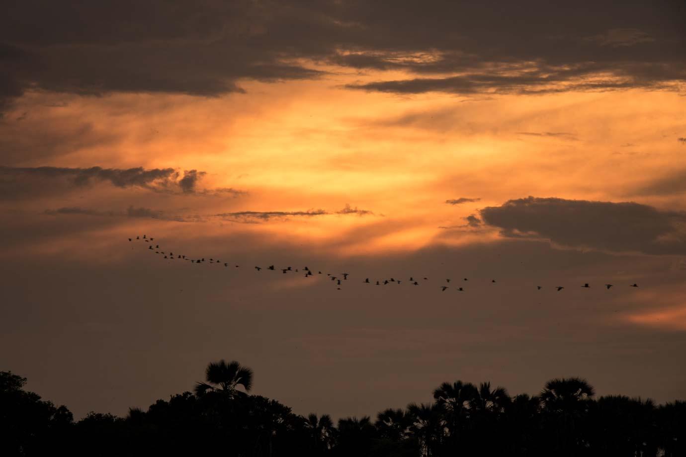 Sonnenuntergang in Simbabwe