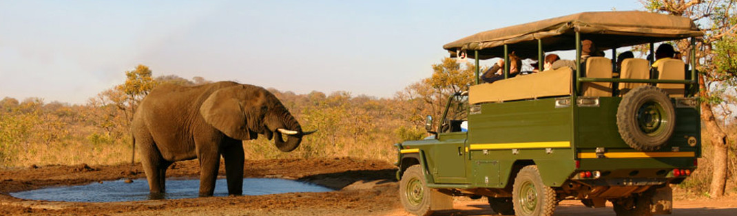 Jeep Safari in Afrika