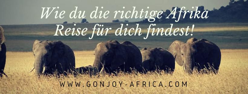 Wie du die richtige Afrika Reise findest