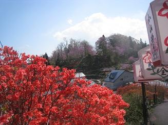 天王神社から七戸城址を望む