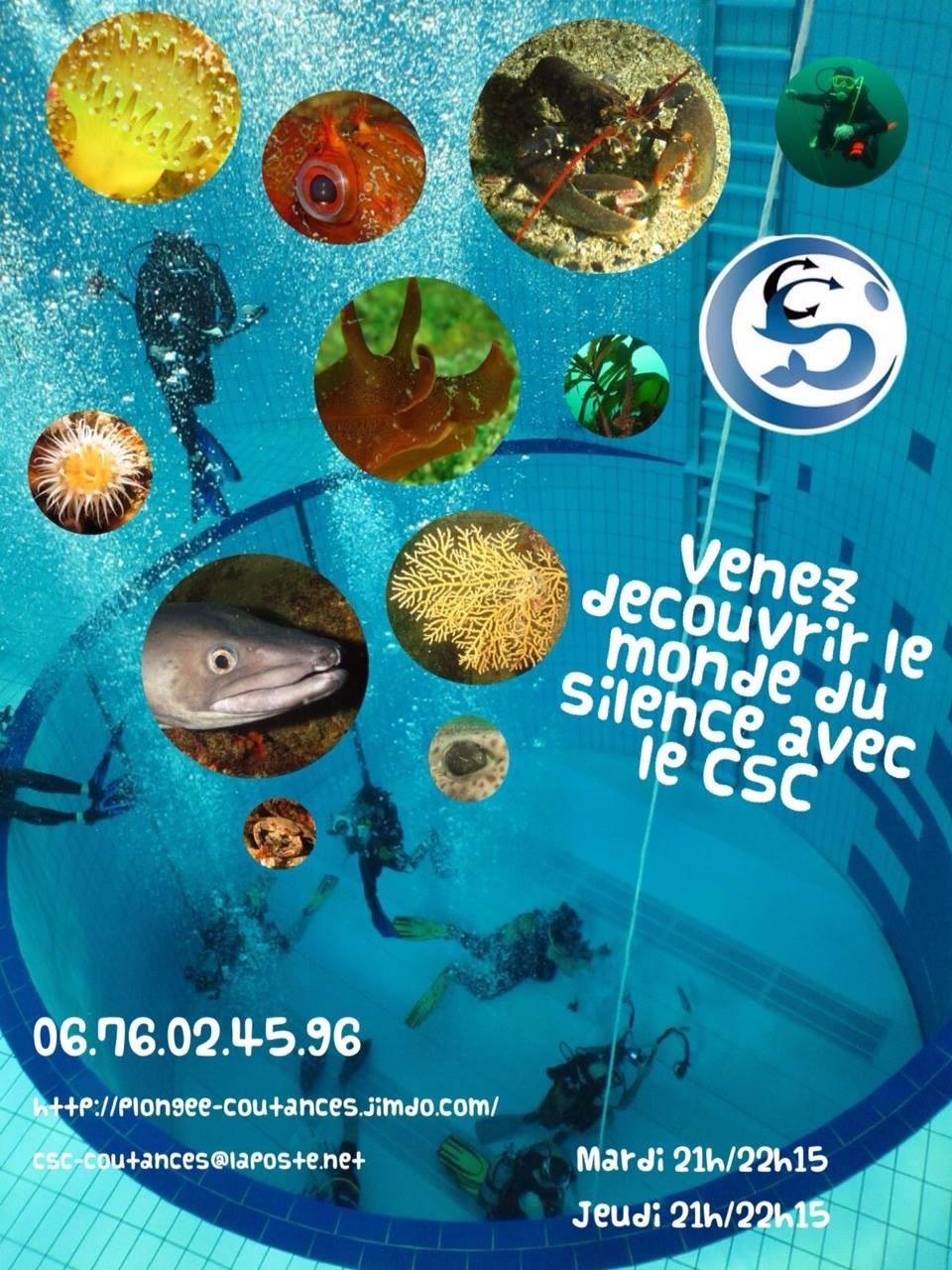 Accueil club de plong e sous marine de coutances for Piscine coutances