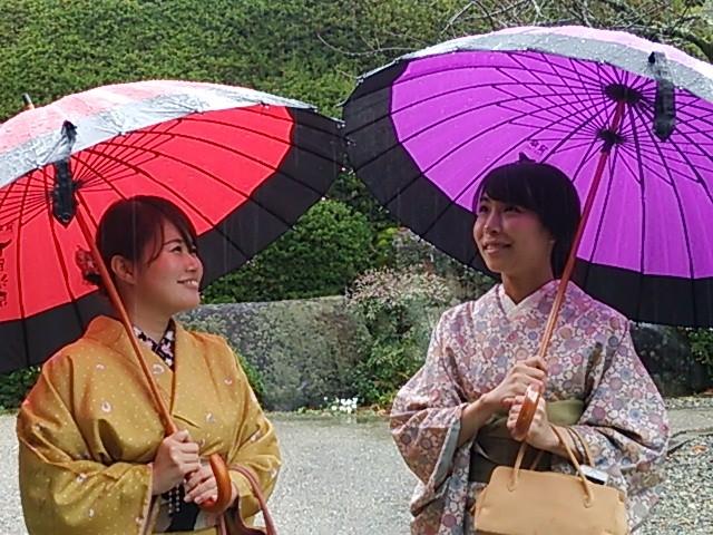 卒業旅行シーズンは雨が心配。でも和傘での着物体験もいい思い出になります