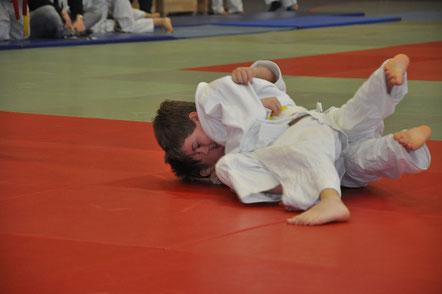 Judo startet wieder