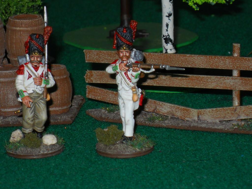 Granatieri di linea - Line Grenadier.