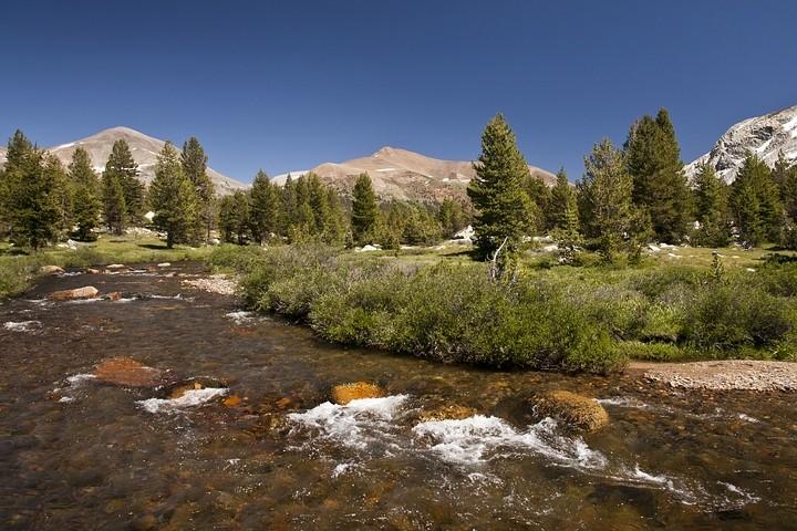 Der Toulumne River schlängelt sich malerisch durch die Hochgebirgslandschaft des Yosemite Park.