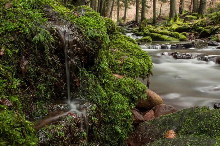 Nicht nur Strudel standen im Fokus ... auch dieser kleine Wasserfall im Vordergrund war ein tolles Motiv.