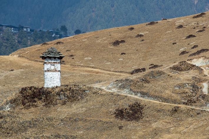 Stupa auf dem Weg zum Gangtey Monastery.