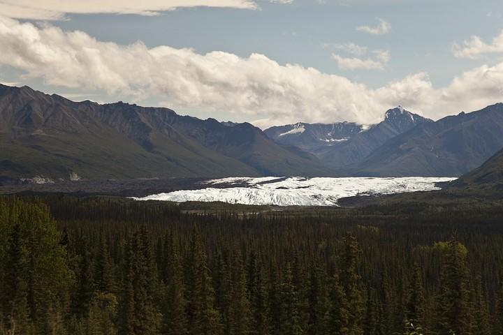 Bei Meile 101 ist der Matanuska Glacier, der einst das ganze Tal ausfüllte, gut zu sehen.