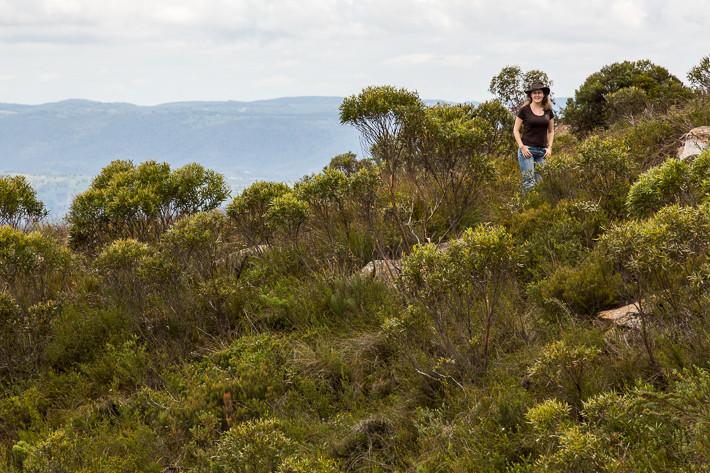 Debora in der Wildnis nahe dem Landside Lookout, im Hintergrund das Megalong Valley.