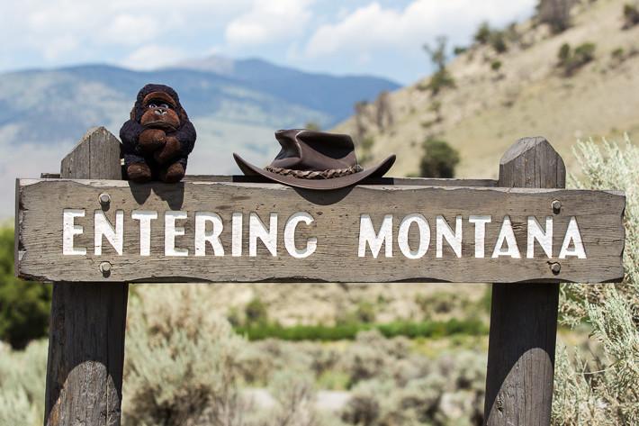 Ein kleiner Teil des Yellowstone Nationalparks liegt in Montana