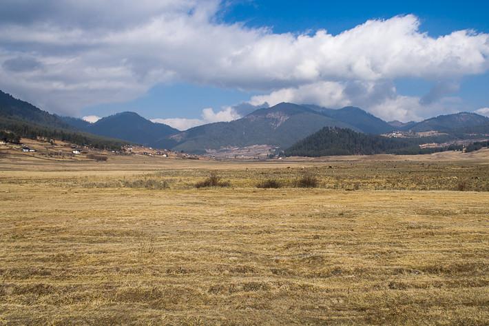 Weites Land ... das Gebiet der Kraniche steht unter Naturschutz und darf nicht bebaut werden.