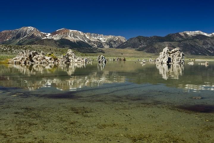 Der Mono Lake wird gerne von Zugvögeln als Rastgebiet genutzt.