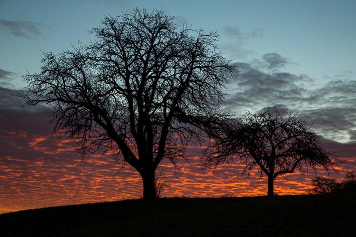 Sonnenaufgang an Silvester