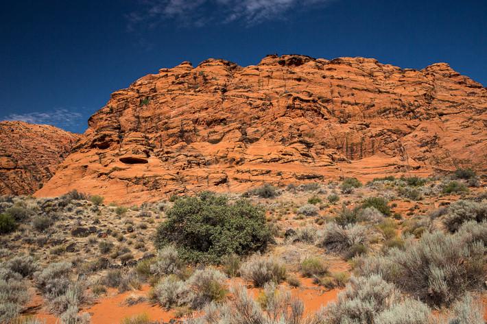 Der rote Navajo Sandstein wird teilweise von schwarzer Lava bedeckt.