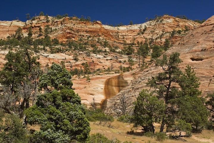 Im Zion NP sind 65 bis 220 Millionen Jahre alte Schichten des Erdmantels sichtbar.