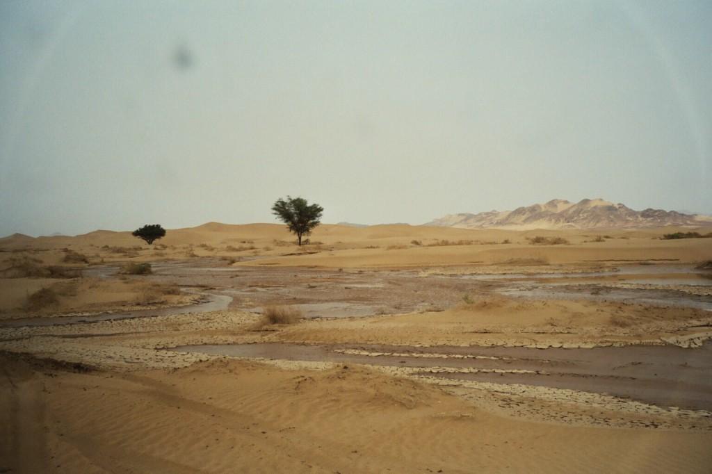 Weit gefehlt, der Oued Tadant ist so voll, dass ein Durchkommen unmöglich ist