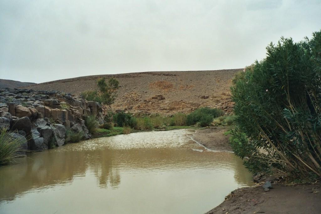 Überall volle Gueltas im Hoggar