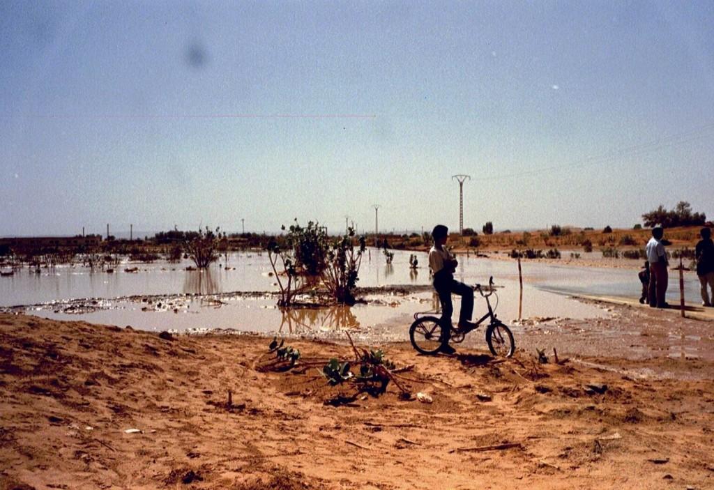 Der Oued Illizi hat die Strasse im Griff