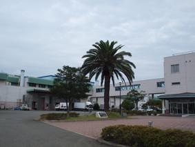 福岡市中央卸売市場食肉市場(ISO9001 認証所得)。肥育農家から出荷された牛がここで枝肉に加工され、せりにかけられます。