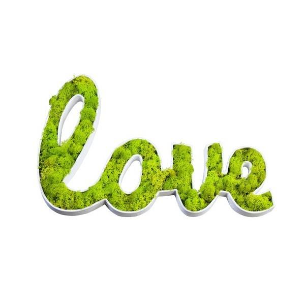 Accueil mur v g tal plantes stabilis es la solution de vos espaces verdoyant pr s de lyon Mousse vegetale deco idees