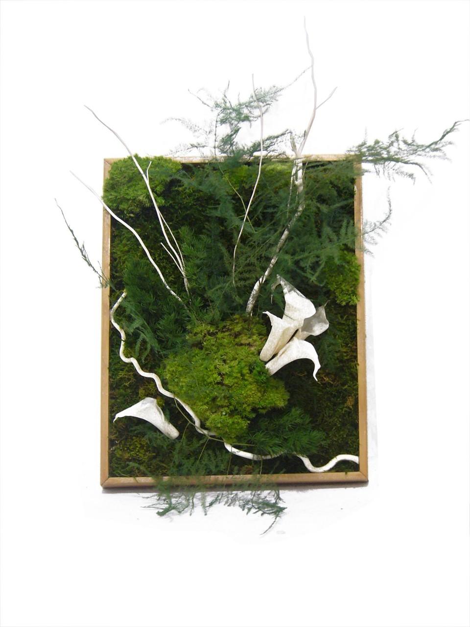 Accueil mur v g tal plantes stabilis es la solution de - Plante d interieur design ...
