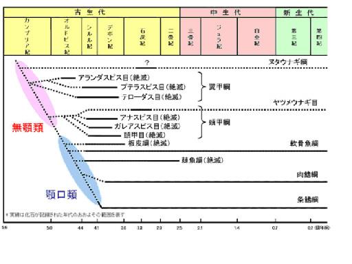図1.脊椎動物の進化と地質年代