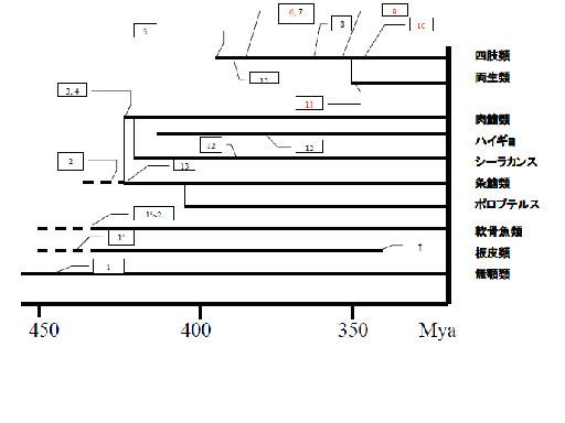図12.上皮の進化