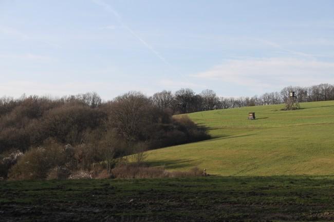 Schlossweg trail