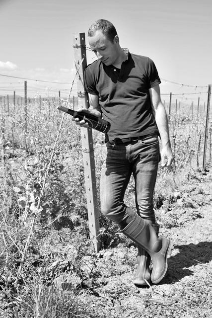 Winemaker Jochen Gradolph