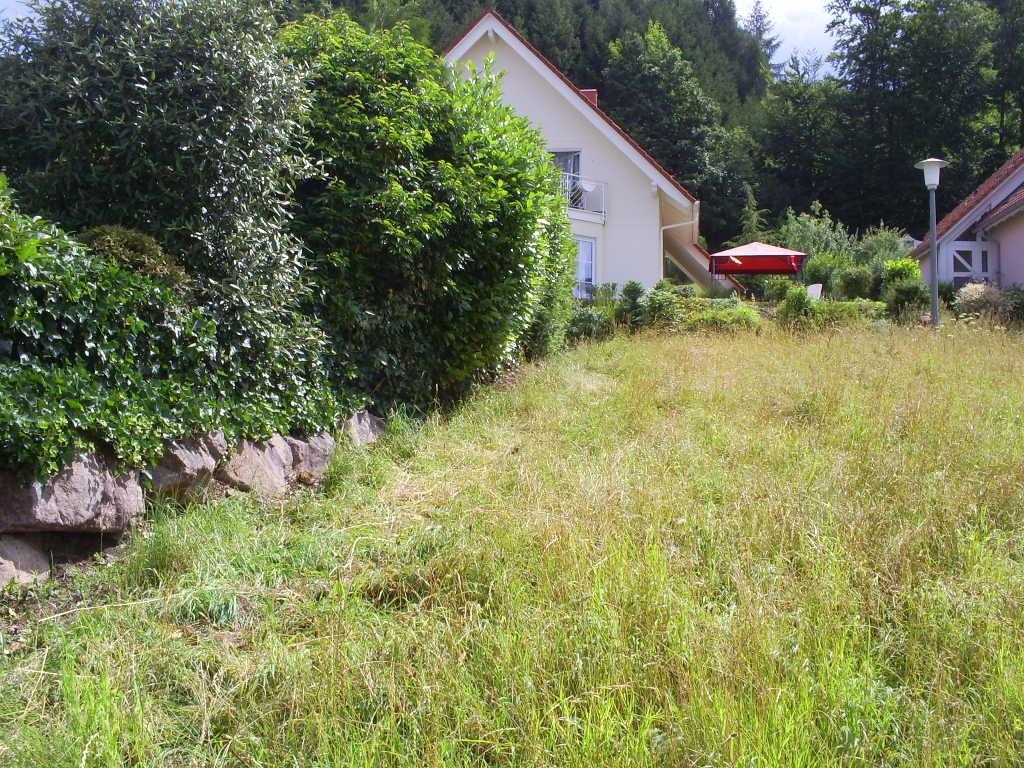 Unbebaute Parzelle mit Blick auf die Bruchsteinmauer des Nachbarn