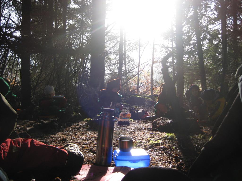 entdeckten einen neuen Platz...den Sherwood Forest