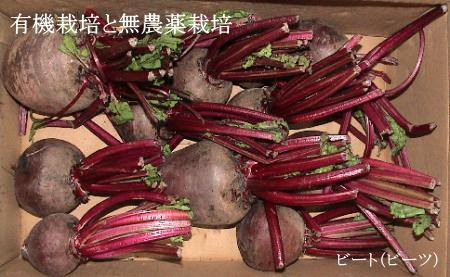 有機栽培と無農薬野菜
