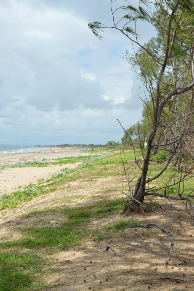 Hier habe ich es mir am Strand gemütlich gemacht, aber vorher gecheckt, obs Schlangen auf dem Baum hat....