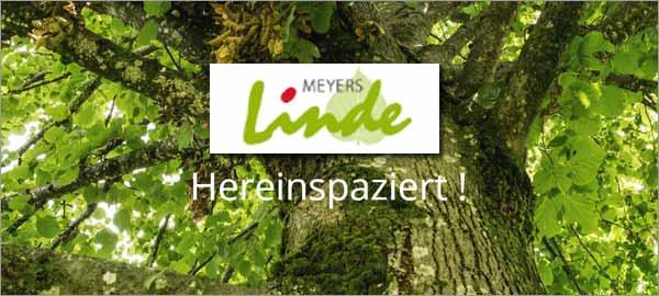 Meyers Linde in Rosengarten-Ehestorf
